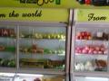 9成新展示冰柜