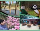 深圳农家乐推荐湖尔美农场大型优质旅游生态园活动基地