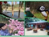 国庆节聚会深圳宝安周边大型农家乐野炊户外运动一日游
