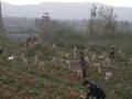 生态山庄水果种植园区招租 对外承包