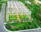 智能温室大棚沙盘模型