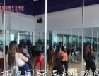娄底哪里可以学爵士舞,韩舞戴斯尔舞蹈学校