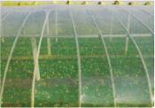 东营农用PO膜,靠谱的农用PO膜供应商推荐