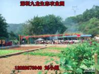 深圳周边游农家乐为大家推荐九龙生态园