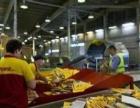 丹东DHL国际快递 大连配载 香港直飞 折扣优惠