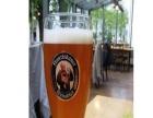 安东啤酒 安东啤酒加盟招商
