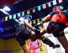 北京成人学搏击就找龍圣搏击国际俱乐部万达店