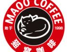 猫窝咖啡加盟
