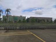 清远佛冈113亩大型工业厂房平价出售