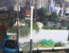 马栏广场 农贸市场农业银行左边第一 摊位柜台 25平米