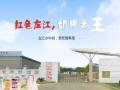 巴氏鲜奶团购工厂直送,更新鲜,更营养,全南宁配送。