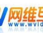 网维互联45元注册.com海外域名