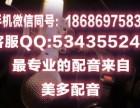 春节素肉叫卖广告录音东北大豆耳广告词