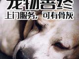 宠物死了怎么处理 宠物火化服务