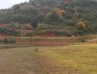 养殖场水库鱼塘农庄
