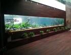 无锡鱼缸定制大型水族箱设计出售