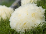 纯天然优质化妆品原料 植物提取物 美白保
