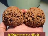 徐州市哪里有卖狼牙 骆驼骨 猛犸牙雕?文玩厂家
