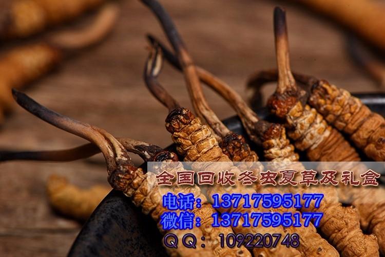 回收虫草北京通州