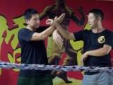 樟木头学咏春拳武术培训 暑假班儿童青少年成人实战散打女子自卫