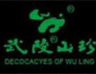 武陵山珍餐饮加盟