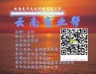 昆明免费便民信息微信平台 微服务