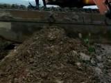 長沙瀏陽水上挖機出租
