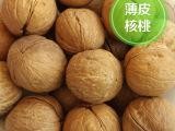 新疆薄皮核桃500g 阿克苏185薄皮核桃批发 休闲食品非纸皮核