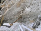 东莞塑料回收ABS,PP,PC,PS,水口,机壳,原料