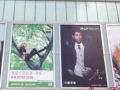 惠州接单广告牌、发光字、标识牌、形象墙、喷绘、写真