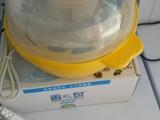 广西尙士华贸易有限公司蒸蛋器出售