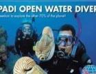 潜水下潜之后怎么办 安全贴士 天津龙泰潜水 天津