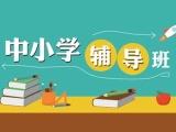 北京中小學全科輔導,小學數學,初中英語,高中物理補習