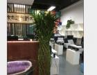 广州专业植物出租 花草租摆 花卉出租 白云区租花