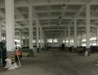 单一层4000平层高9m厂房出租,有宿舍办公