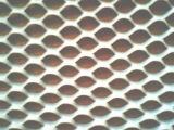 供应塑胶防护网冷却塔回风网护栏网 |双边丝护栏网 |浸塑双边丝护