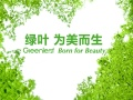 东莞苏州绿叶加盟代理,绿叶爱生活奖金制度