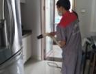 深圳酒店餐饮小区工厂宿舍家庭等消杀蟑螂老鼠臭虫白蚁 捷控