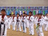 汕头学跆拳道,就来中传青少年综艺学部