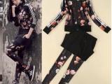 春装 2014春装新款修身显瘦欧美款玫瑰印花3件套套装裙子打底裤