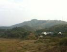 清远市1400亩山地