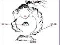 呼和浩特风水大师、内蒙古风水大师、内蒙祖传风水大师