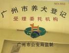广州宠物医院24小时营业的宠物医院广州好的宠物动物医院