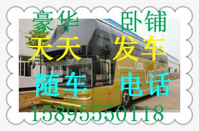 苏州到周口的汽车 客车15895550118/票价+多少钱