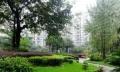 白马凼新世纪旁 超大2房中装首付8.8万学区房 白马凼小区