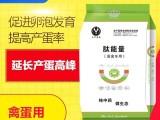肽能量(蛋禽专用),饲料添加剂,纯中药添加剂