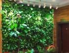 云南昆明绿化墙装饰设计
