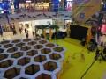 多人运动项目蜂巢迷宫出租挑战脑细胞开发蜂巢迷宫租赁