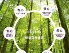 skytex泰国乳胶枕招商加盟 原装进口专人带店