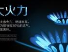 全新联保樱花系列高档电热水器包邮320数显